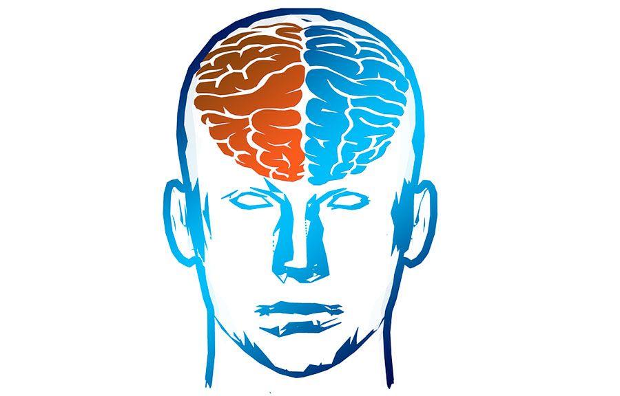 integratori sono utili per cervello e memoria