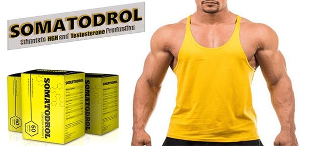 somatodrol-benefici